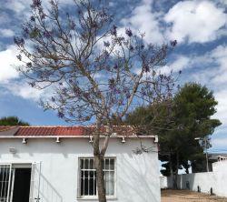 Villagomez