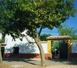 La Casa De Bazan