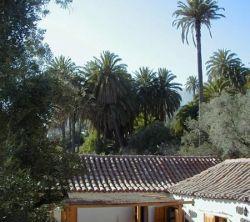 El Palmeral Del Valle