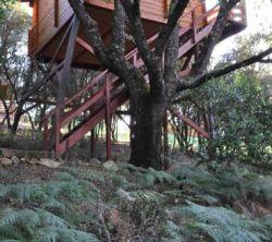 Eco Lodge De Cabañeros