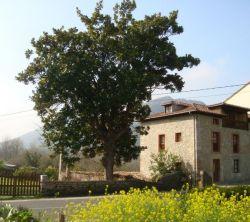 Casas La Roza