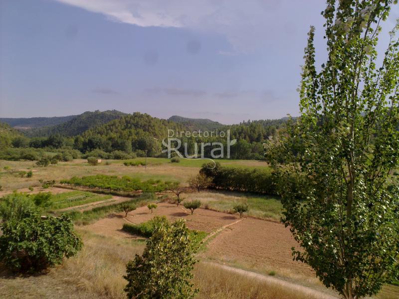 3bfa639dacd81 Casas De Alcance - Casa Rural en Cofrentes (Valencia)